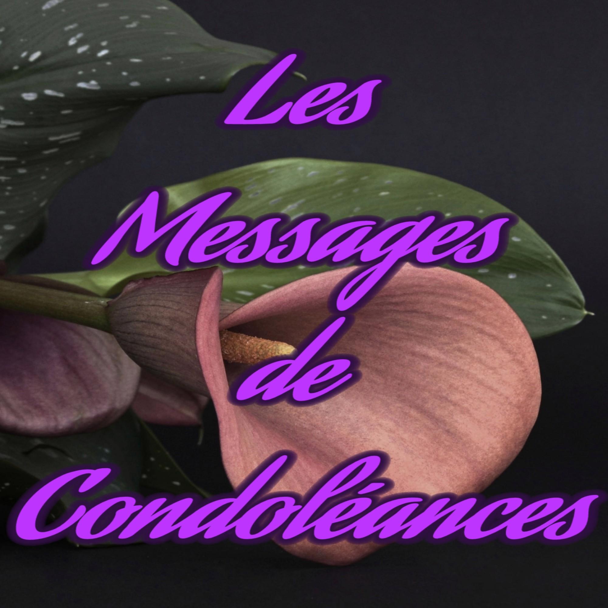 LES IDÉES DE MESSAGE DE CONDOLÉANCES